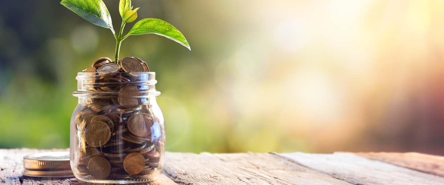 jar filled with coins on a wooden deck with a plant growing out of it