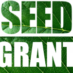 RISE Seed Grant